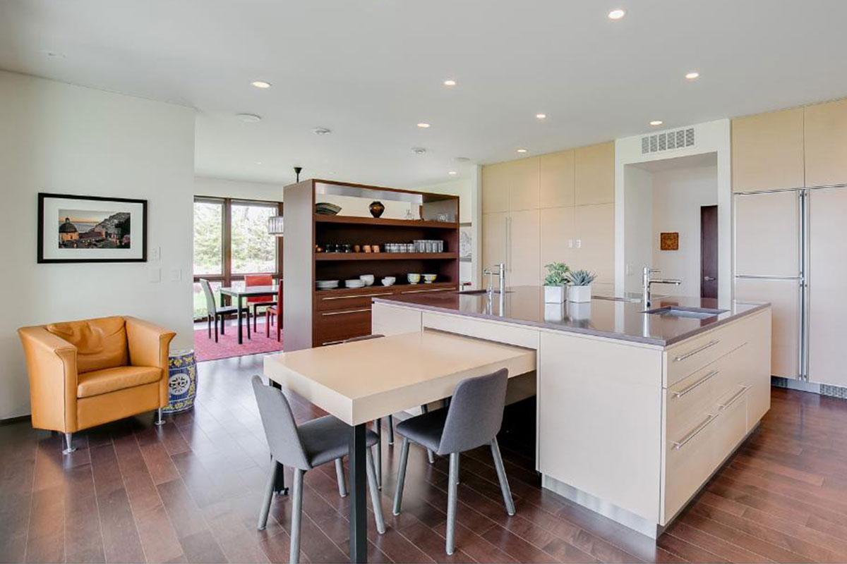 North Oaks Contemporary Kitchen Remodel